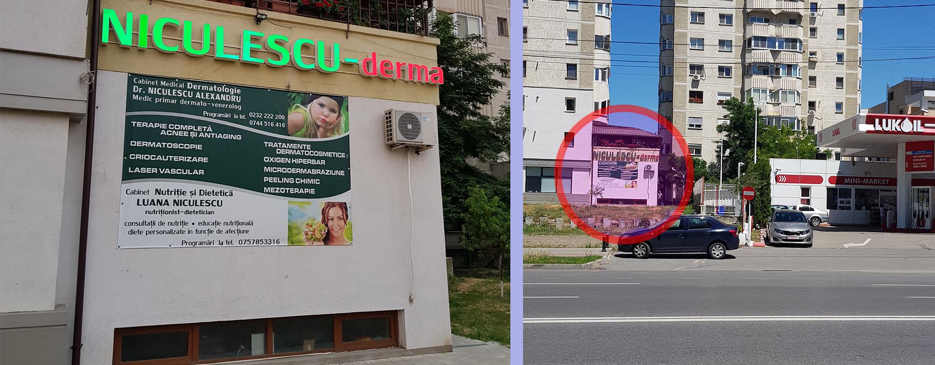 Cabinet-Niculescu-1